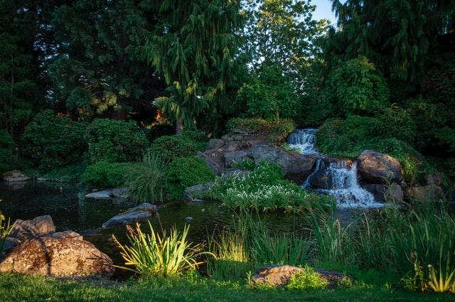 Comment créer un bassin avec une cascade ?